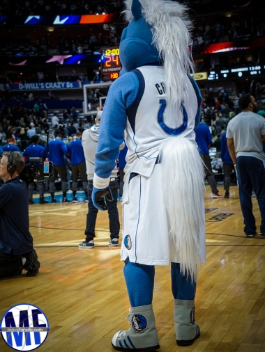 mavs-fanatic-11-of-39